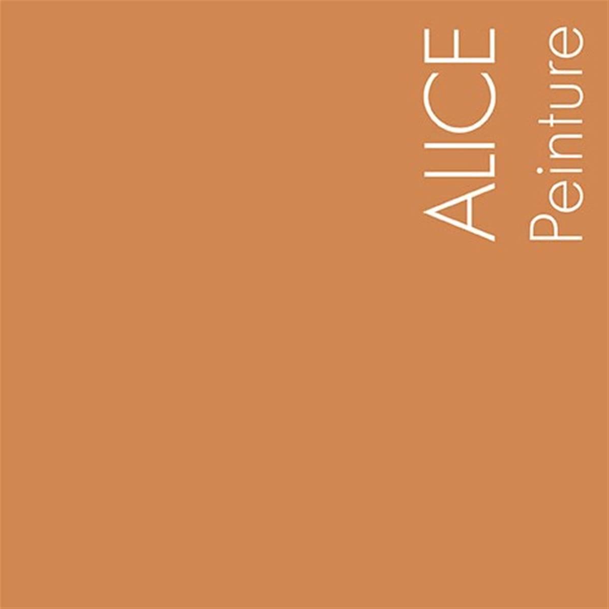Vente en ligne des peintures mercadier int rieur ext rieur 120 couleurs for Peinture orange brule